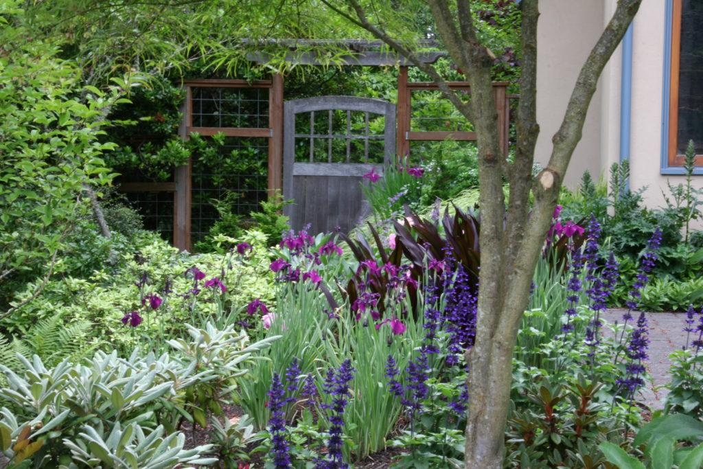 Servizi Giardinaggio roma progettazione Manutenzione giardini Roma
