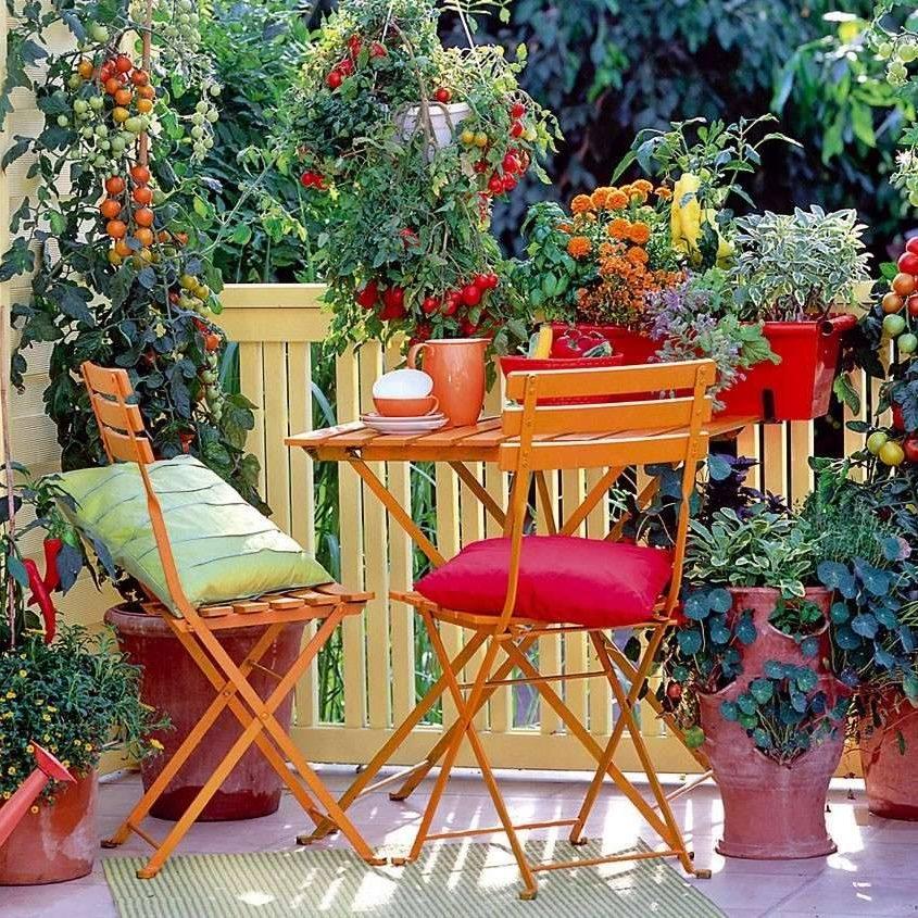 Progettazione Realizzazione Manutenzione Giardini Roma