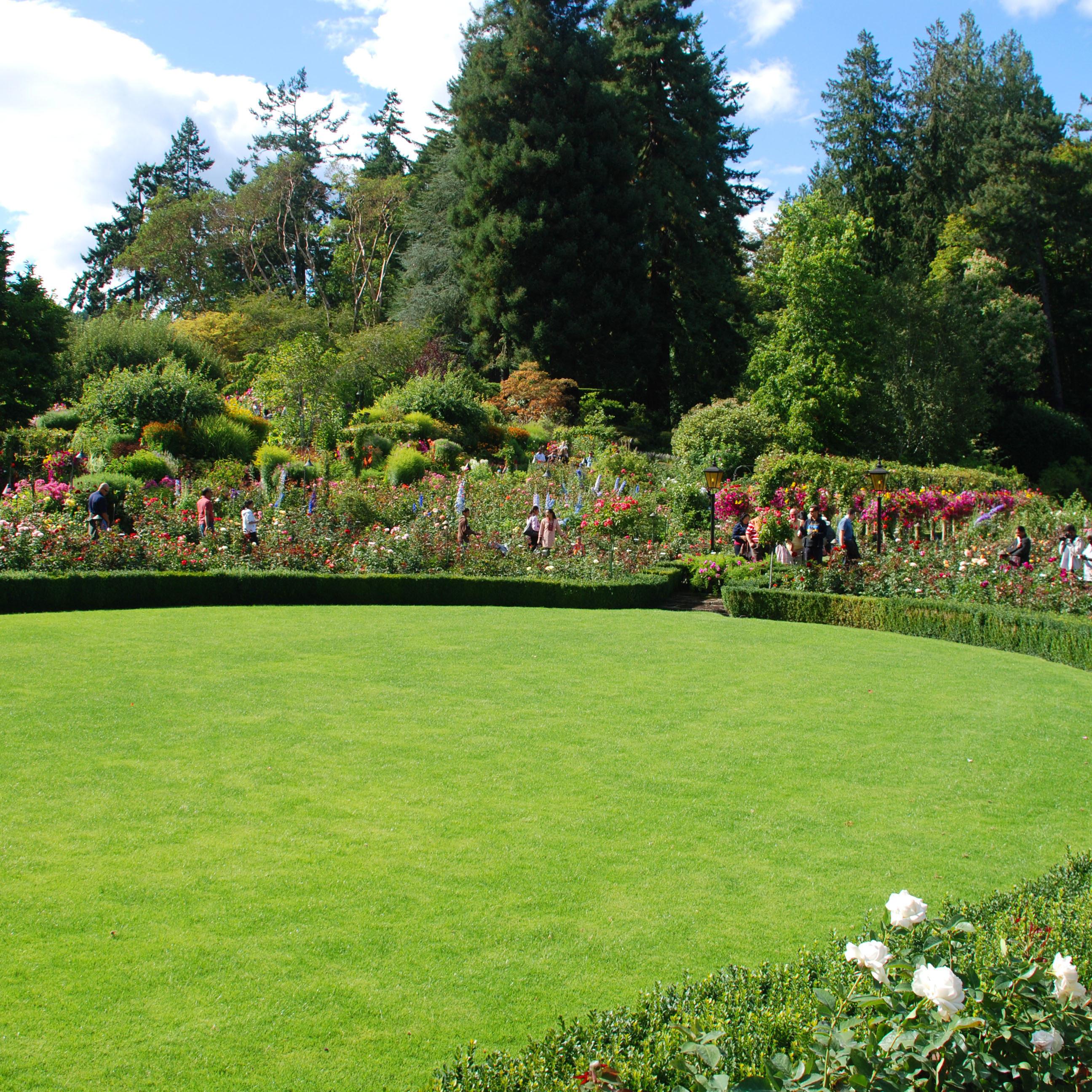 manutenzione giardini roma manutenzione giardini